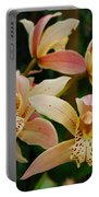 Orchid 255 Portable Battery Charger