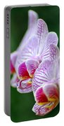 Orchid 30 Portable Battery Charger