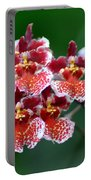 Orchid 31 Portable Battery Charger