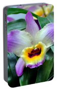 Orchid 34 Portable Battery Charger