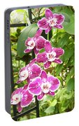 Orchid #4 Portable Battery Charger