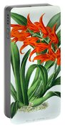 Orchid, Ada Aurantiaca, 1880 Portable Battery Charger