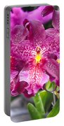Orchid Aliceara Marfitch Portable Battery Charger