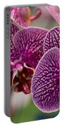 Orchid Ascda Laksi Portable Battery Charger