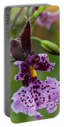 Orchid - Caucaea Rhodosticta Portable Battery Charger