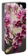 Orchid Chian Xen Violin Portable Battery Charger