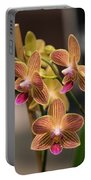 Orchid Chingruey's Goldstaff Portable Battery Charger