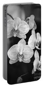 Orchid Cluster Close-up Portable Battery Charger