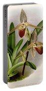 Orchid, Cypripedium Elliottianum, 1891 Portable Battery Charger