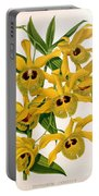 Orchid, Dendrobium Chrysotis, 1891 Portable Battery Charger
