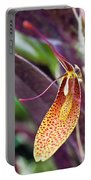 Orchid Flower - Restrepia Radulifera Portable Battery Charger