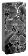 Orchid Glory Black And White Portable Battery Charger