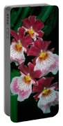 Orchid Group Portable Battery Charger