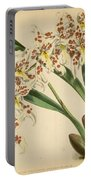 Orchid Odontoglossum Andersonianum Grenada  Portable Battery Charger
