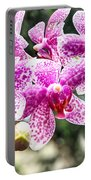 Orchid Phalaenopsis Carnival Bonsall Portable Battery Charger