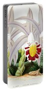Orchid, Pleione Lagenaria, 1880 Portable Battery Charger