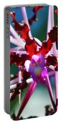 Orchid Spider Portable Battery Charger