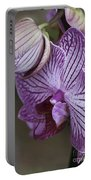 Orchid Strips Portable Battery Charger