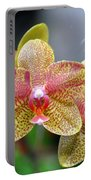 Orchids 35 Portable Battery Charger