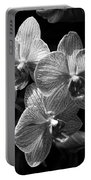 Orchids In Black And White Portable Battery Charger