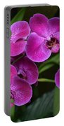 Orchids In Vivid Pink  Portable Battery Charger