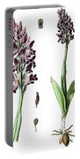 Orchis Militaris, The Military Orchid Portable Battery Charger