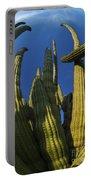 Organ Pipe Cactus Arizona Portable Battery Charger