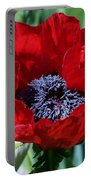 Oriental Red Photograph Portable Battery Charger