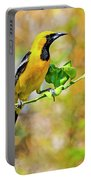 Oriole Portable Battery Charger