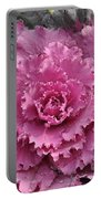 Ornamental Cabbage Portable Battery Charger