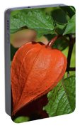 Ornamental Physalis Portable Battery Charger