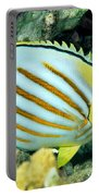 Ornate Butterflyfish Portable Battery Charger