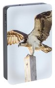Osprey 8140 Portable Battery Charger
