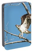 Osprey And Black Billed Magpie Portable Battery Charger