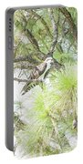 Osprey Applesauce Portable Battery Charger
