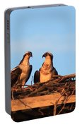 Osprey At Home Portable Battery Charger