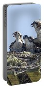 Osprey Family Portrait No. 2 Portable Battery Charger