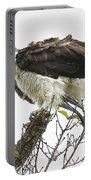 Osprey Fluff Portable Battery Charger
