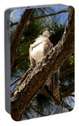 Osprey Hunting Portable Battery Charger
