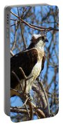 Osprey In Spring Portable Battery Charger