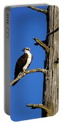 Osprey Nest Guard - 001 Portable Battery Charger