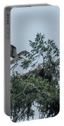 Osprey Reinforcing Its Nest 2017 Portable Battery Charger