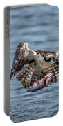Osprey With Catch 9108 Portable Battery Charger