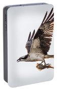 Osprey With Fish 8138 Portable Battery Charger