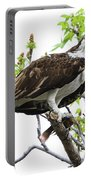 Osprey With Snack Portable Battery Charger