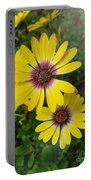 Osteospermum-blue Eyed Beauty  Portable Battery Charger