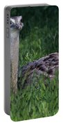Ostrich Chick Portable Battery Charger