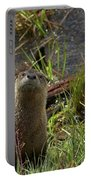 Otters Portable Battery Charger