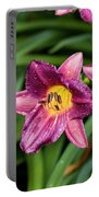 Purple Stella Doro Day Lily Portable Battery Charger