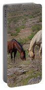 Out In The Open Range Portable Battery Charger
